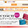 日本最大級のショッピングモール パークでもっとお得に購入する方法